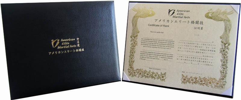 Custom Gold or Sliver Foil Logo Imprinted Folders