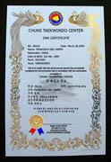 Custom Phoenix Martial Arts Certificate