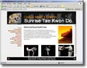 custom martial arts website design